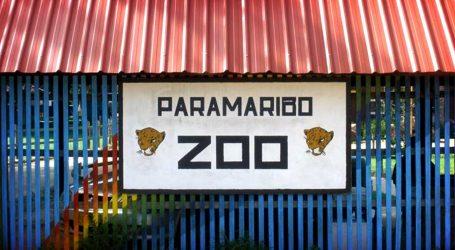 Paramaribo Zoo moet Biotopentuin worden