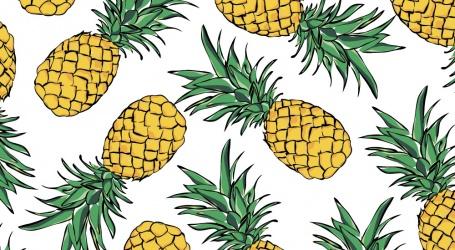 Eigenaar ananasfabriek Redi Doti draagt aandelen over