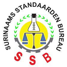 """. """"validatie workshop ten behoeve van de Nationaal Standaardisatie Strategie 2020- 2022"""""""