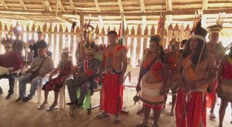 Inheemse Trio stam heeft nieuwe granmang